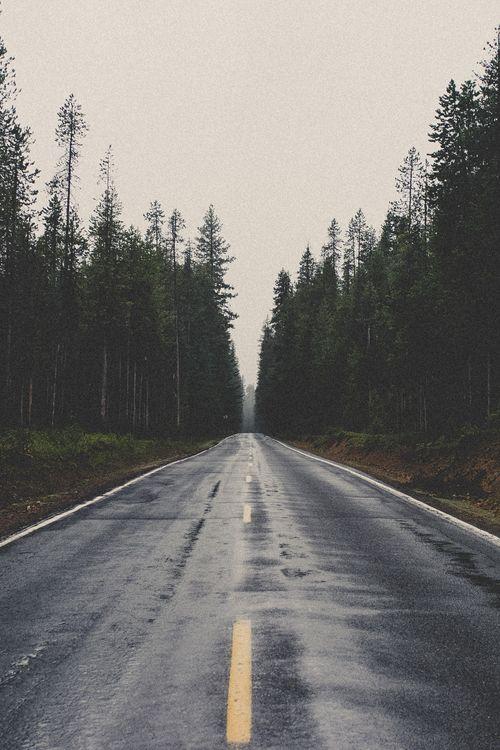 Adventure | life | freedom