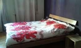 Apartament 2 camere (Cismigiu)