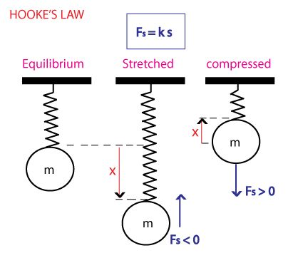 Hooke's Law and Elasticity | smtutor Learning center - Home of self learning