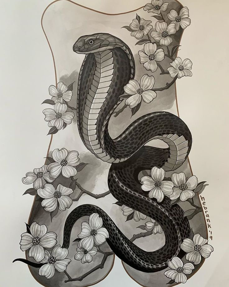 хочу, картинки змей карандашом в цветах что речная уклейка