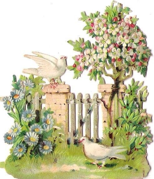 Oblaten Glanzbild scrap die cut chromo Taube dove colombe Garten garden blossom