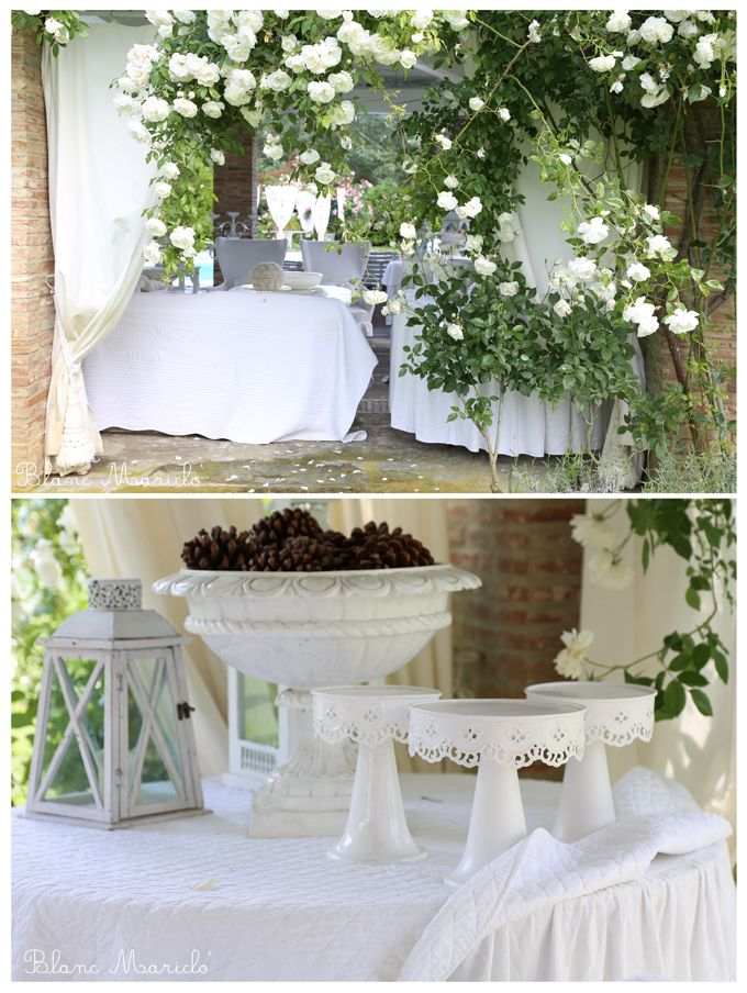 blanc mariclo romantic patio and garden with white roses
