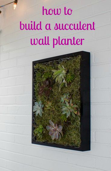 Some supplies from the local craft store and a few easy-to-follow steps is all you need to build a beautiful succulent wall planter.