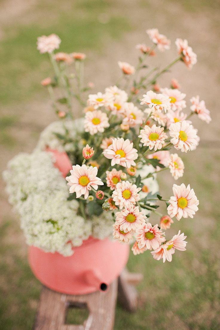 12 best mothers day floral images on pinterest mom mothers and happy mothers day mommy here are some daisies from your daughter via internet izmirmasajfo