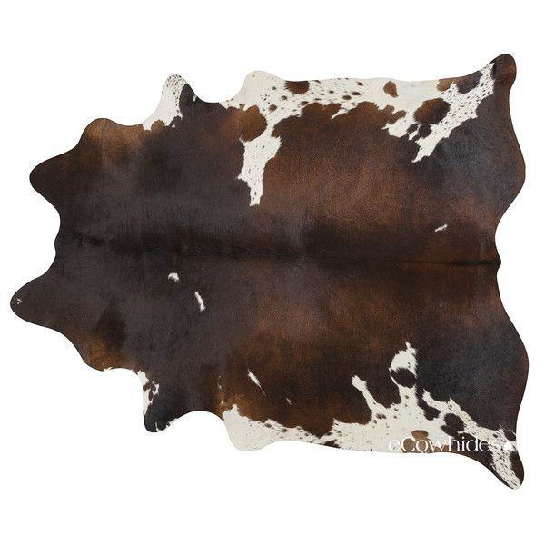 chocolate brazilian cowhide rug cow hide rugs large 275 liked on polyvore featuring