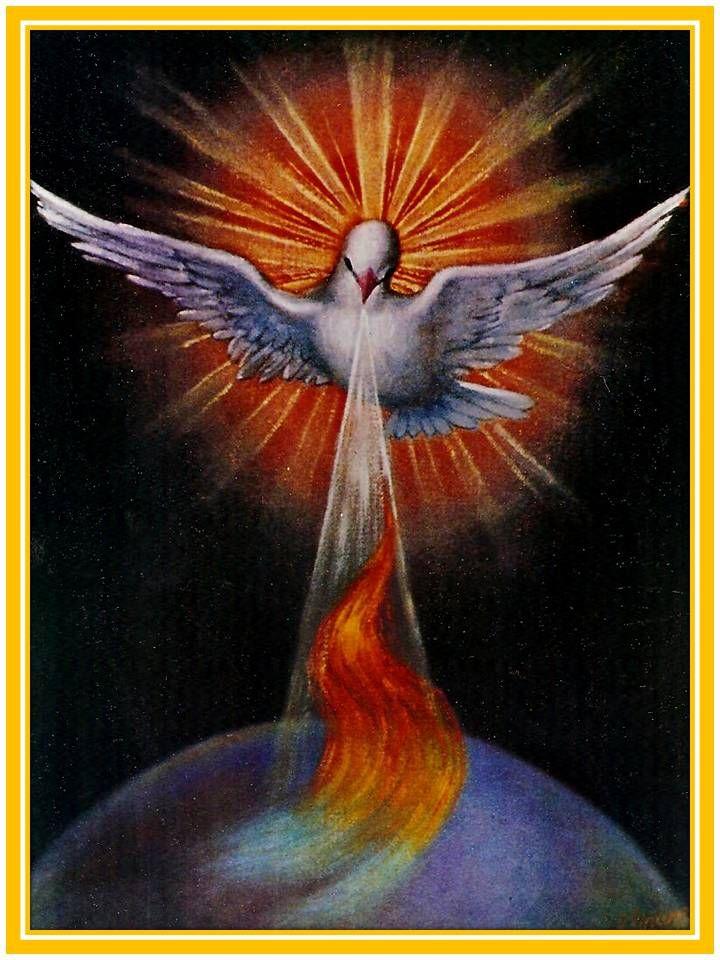 Espíritu Santo,   amor del Padre y del Hijo   te adoro, te alabo y te bendigo.    Espíritu de caridad   fuente inagotable de gozo y de ...