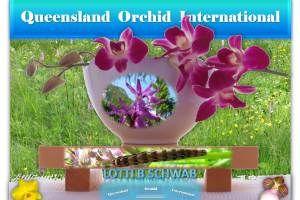 Lotti B Schwab and Her Love of Native Orchids in Austria 🎑 https://queenslandorchid.wordpress.com/2015/06/20/lotti-b-schwab-and-her-love-of-native-orchids-in-austria/