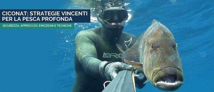 Ciconat: strategie vincenti per la pesca profonda #ciconat #pescainapane #pescasub #spearfishing #
