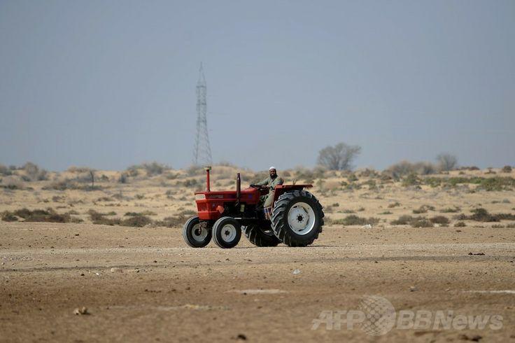 パキスタン・パンジャブ州(Punjab)のバハワルプール(Bahawalpur)地区に建設予定の太陽エネルギー公園のそばで農作業を行う村人(2014年2月17日撮影)。(c)AFP/Aamir QURESHI ▼28Apr2014AFP|砂漠の太陽エネルギー公園、電力危機克服の挑戦 パキスタン http://www.afpbb.com/articles/-/3013188