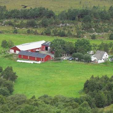 Workaway in . Live and help on a beautiful farm: from animal care, cheesemaking to building projects in lundegrend, Norway.