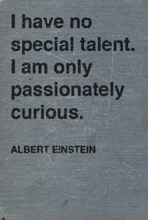 Passionately curious. {Tracing Echoes}
