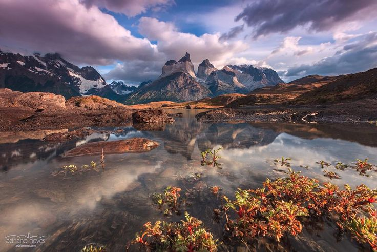 "Featured Photo from the Fstoppers Community - Title: Eden's Garden Photographer: Adriano Neves — ""Cuernos del Paine reflection over the glacial waters of lake Nordenskjöld... Or perhaps a vision of Eden's Gardens?"""