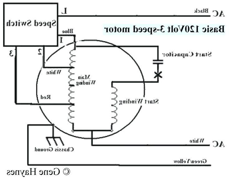 Blower Motor Wiring Diagram - volovets.info   Utiles