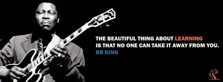 The beautiful thing about learning is that no one can take it away from you. B.B.King