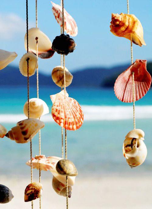 shells: At The Beaches, Idea, Sea Shells, Shells Wind Chimes, Windchimes, Summer, Beaches Houses, Seashells, The Sea