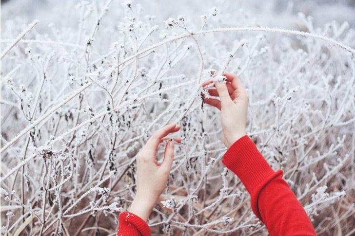: Color Palettes, Natural Photography, Color Schemes, Winter Color, Artphotographi Inspiration, Fantastic Photography, Inspiration Pictures, Pretty Photo, Photography Inspiration