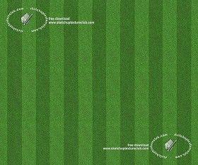 Textures Texture seamless | Football green grass texture seamless 18716 | Textures - NATURE ELEMENTS - VEGETATION - Green grass | Sketchuptexture