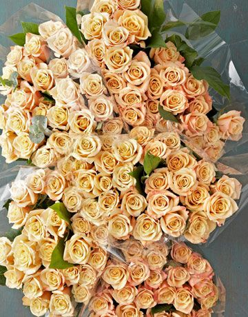 100 roses @ costco.com for $99.99!  If you don't have access to a wholesale flower market, don't worry. You can still buy quality buds in bulk at costco.com, says George, and they're a downright steal! (Only $99.99 for 100 roses, including shipping and handling)