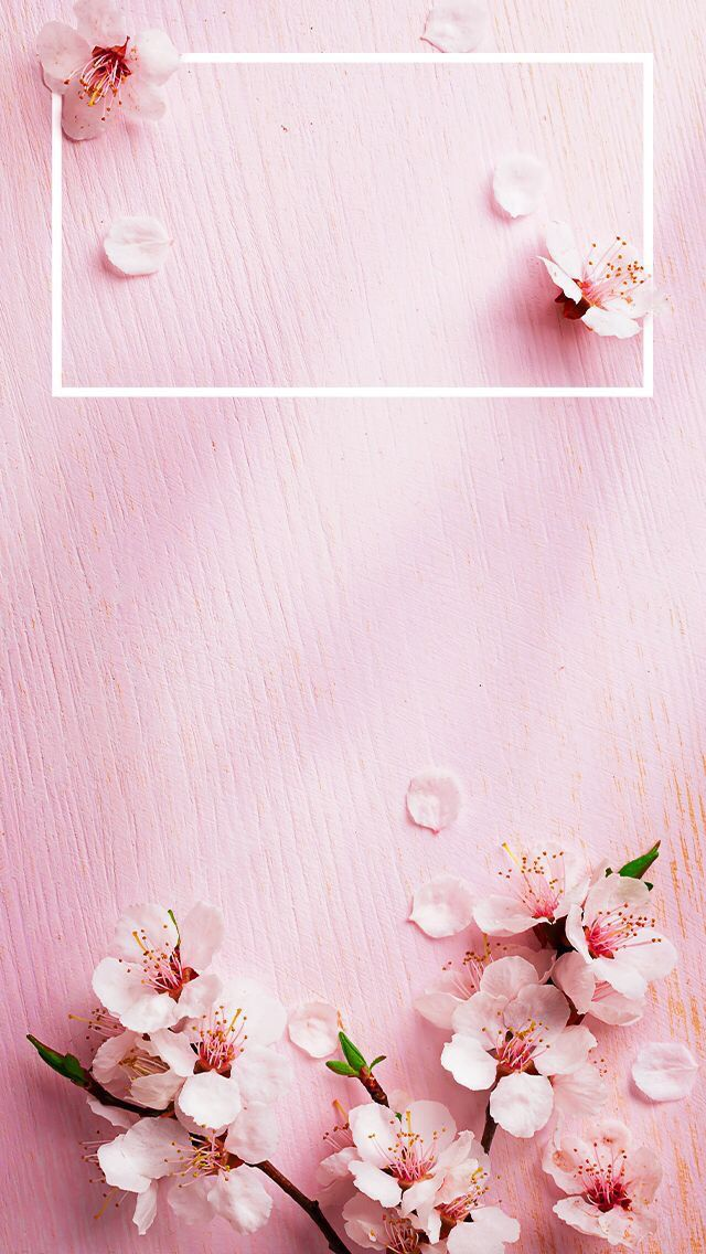 Pin By Frzsjr On Wallpapers Iphone Spring Wallpaper Spring Wallpaper Rose Gold Wallpaper Coolest flower iphone wallpaper