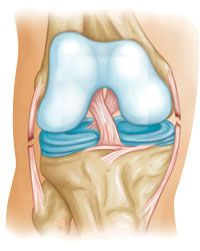 Common Knee Injuries-OrthoInfo - AAOS