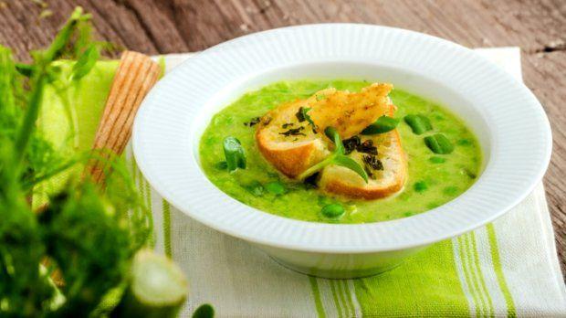 Zelené jarní polévky Foto: