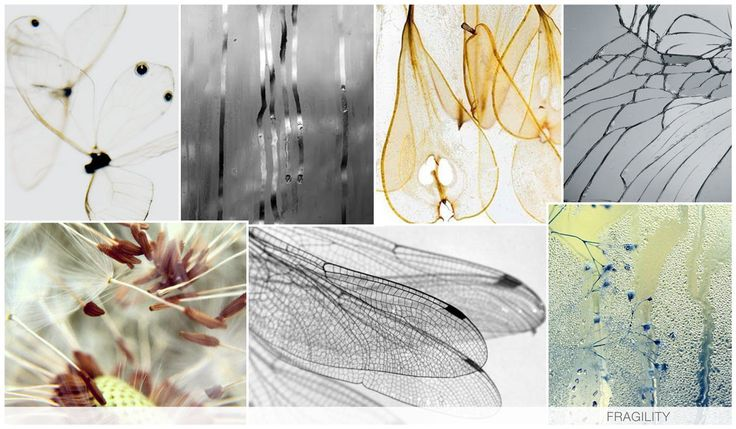 FRAGILITY See through and fragile imagery such as butterfly wings, flowers, and bubbles are key, as we appreciate their delicate frame. Steam and condensation via photoreals adds a modern twist to this trend, as we are simply appreciating the sheer and fragile layering.