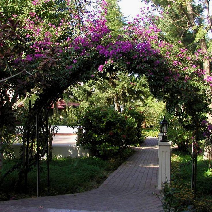12 Beautiful  Garden Designs You Can Build Yourself To Accent Your Landscape |  Mediterranean Garden Designs Designs no. 1768 |