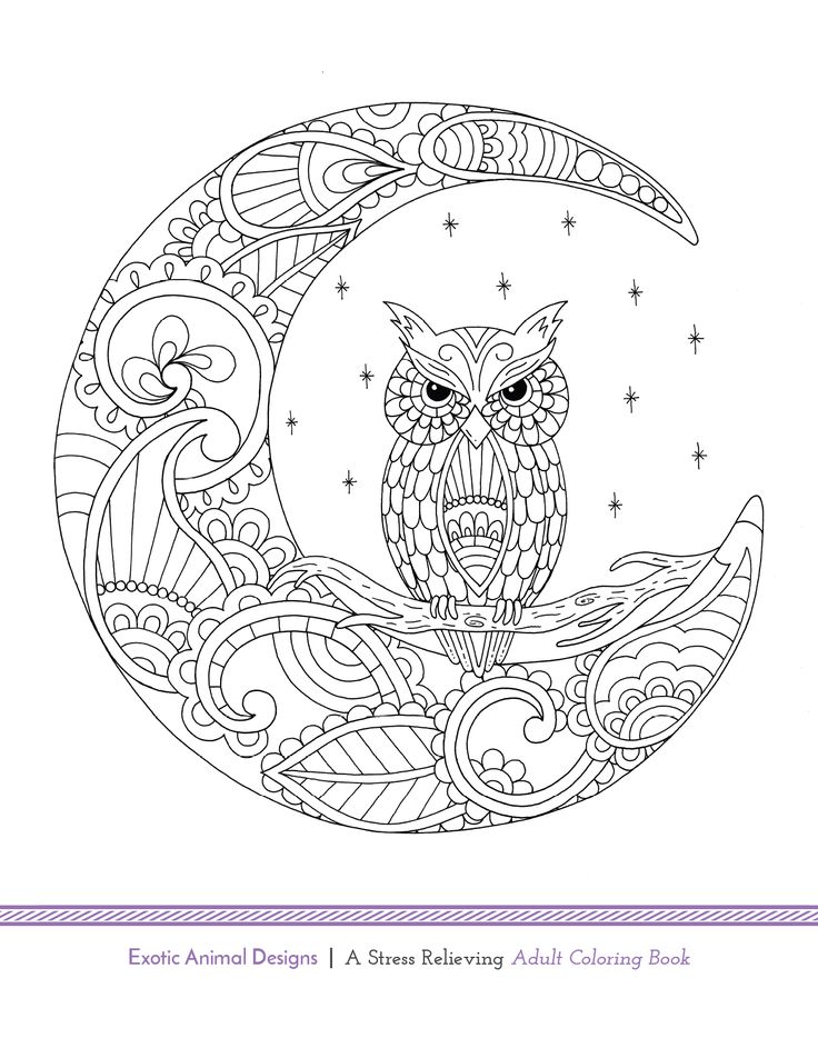 Artists Colouring Book Art Nouveau : Blue star coloring book exotic animal designs by artist katie