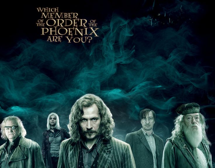 harry potter and the order of the phoenix essay questions