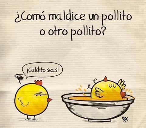 ¿CÓMO MALDICE UN POLLITO A OTRO? desde frasesimagenescompartir.blogspot.com