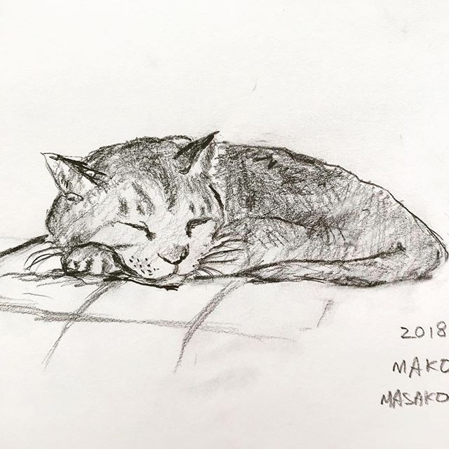 君の顔は難しいです。 . だから もっともっとちゃんと見ようと より君を見るように なりました。 . #ねこ #愛猫 #幸せな時間 #絵画 #cutecat #lovecats #catsketch #sketch #drawing #catpictures #cat #pencildrawing #catdrawing #art #作品撮り #猫のいる暮らし #にゃんこ #猫 #猫の絵 #鉛筆画 #スケッチ #絵本好き #挿絵 #大好きな猫#hygge #illustration