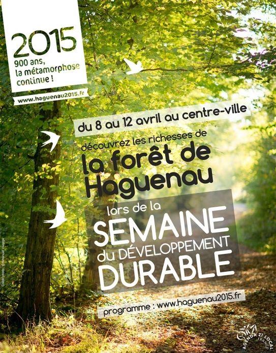Conférence sur l'expansion et le recul des forêts alsaciennes au cours du temps, Haguenau (67500), Alsace