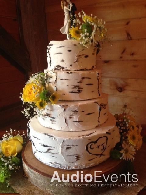 25 Best Ideas About Birch Wedding Cakes On Pinterest