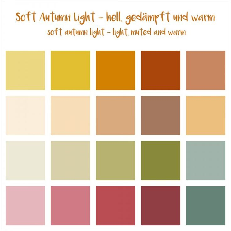 soft autumn light (16 er)