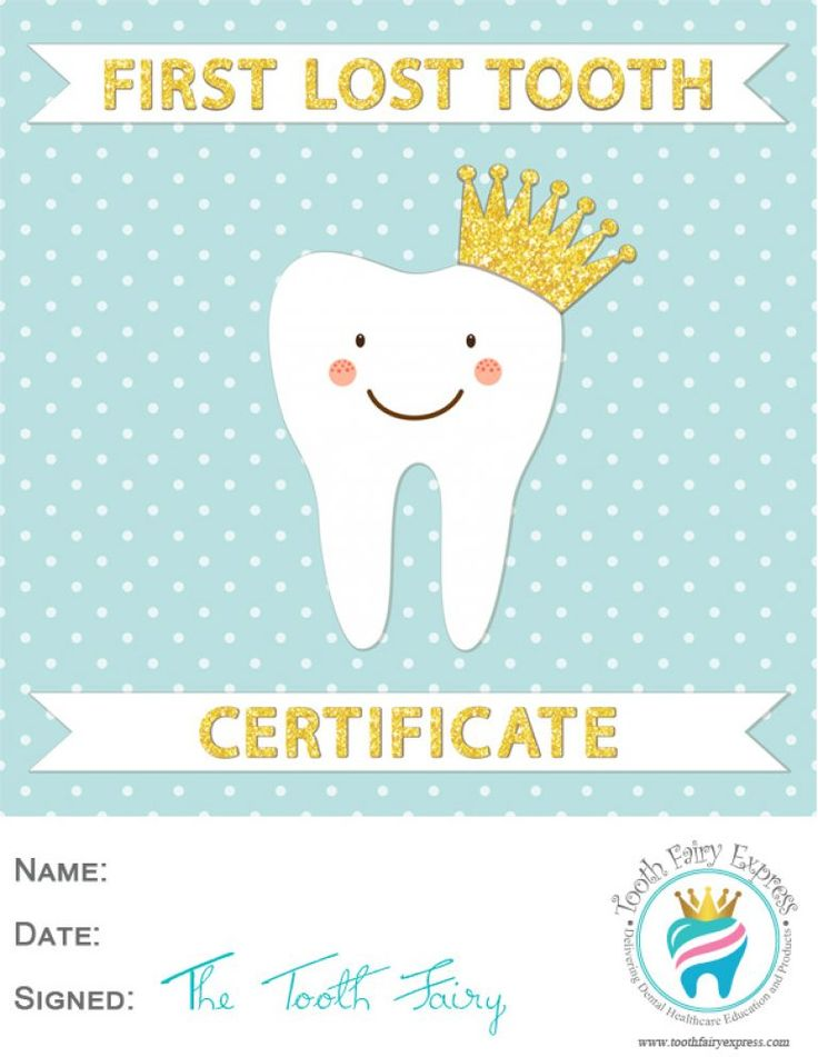 First Lost Tooth Certificate Tooth Fairy Certificate