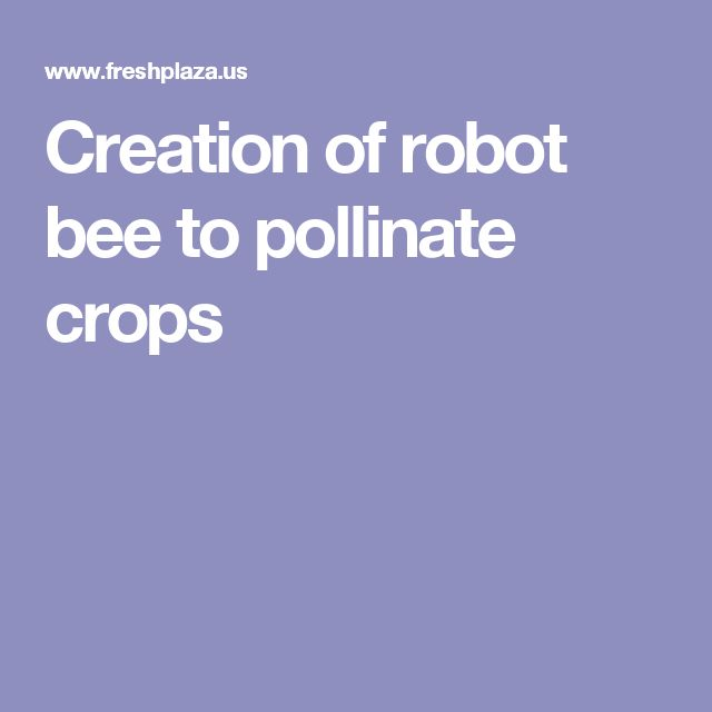 Creation of robot bee to pollinate crops