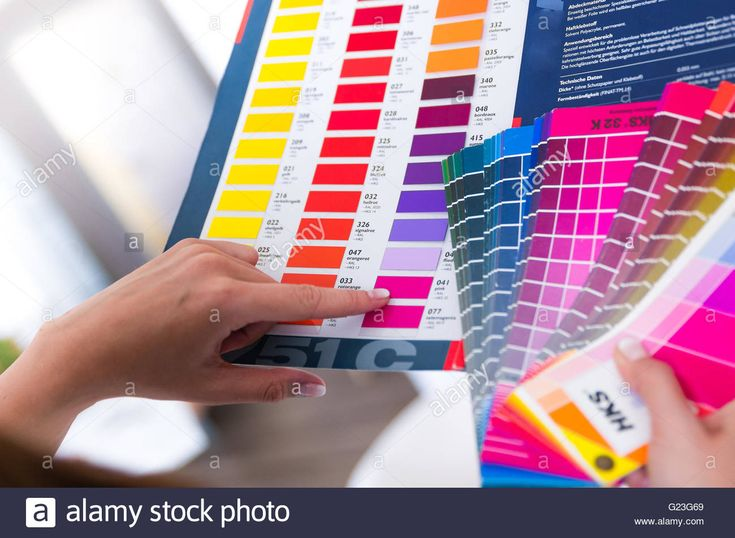 Download this stock image: graphic designer with color fan - G23G69 from Alamy's library of millions of high resolution stock photos, illustrations and vectors.