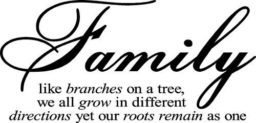 Family Like Branches On A Tree vinyl lettering wall sayings home art decor $10.99