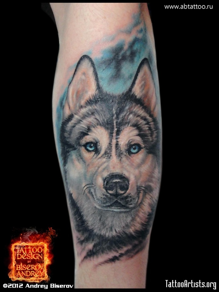 amazing realistic husky tattoo tattoos pinterest beautiful love this and will have. Black Bedroom Furniture Sets. Home Design Ideas