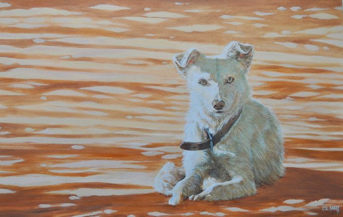 Werfhond    (oil on canvas, 700X1100X25mm)  by Lisl Barry   www.lislbarry.co.za  Little Karoo animals