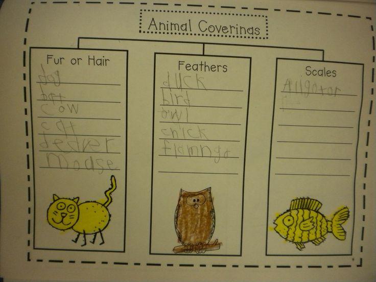 12 best animal coverings images on pinterest animal coverings kindergarten science and kinder. Black Bedroom Furniture Sets. Home Design Ideas