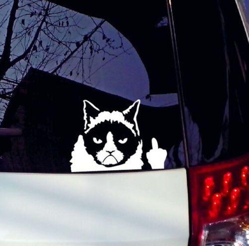 Drôle de chat grincheux pour Auto voiture/pare-chocs/fenêtre vinyle autocollant autocollants