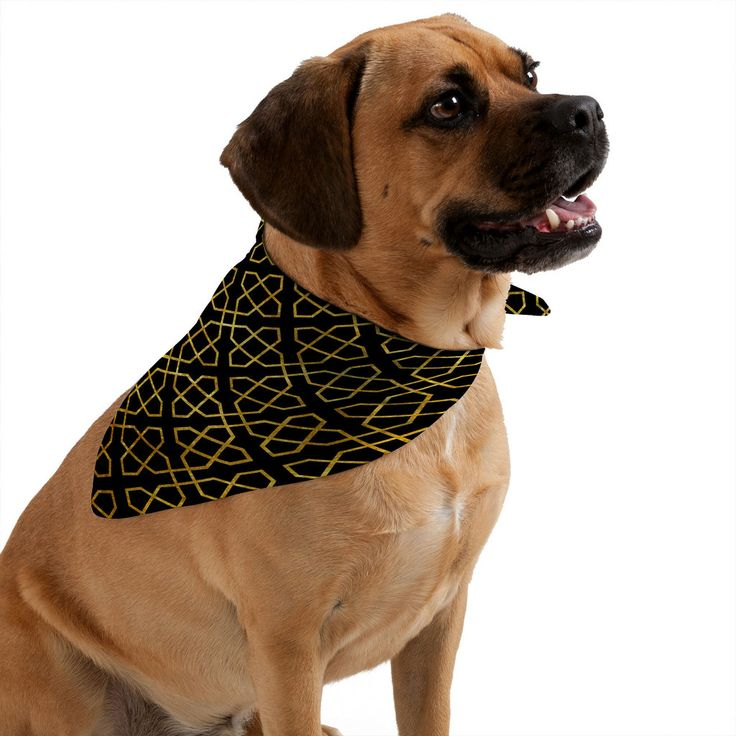 Three Of The Possessed The Message Pet Bandana   DENY Designs Home Accessories