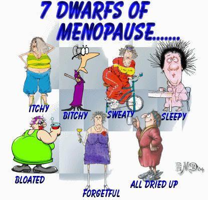 Bildergebnis für menopause lustig