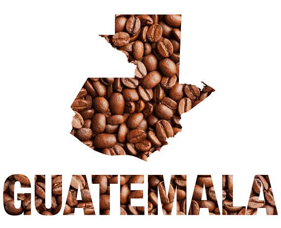 Roasted Guatemalan Coffee. Guatemalas coffees have a distinctive taste favored by many for its rich flavor. This coffee is a sweet and smooth coffee with a lingering clean bittersweet chocolate aftertaste. It is a medium bodied coffee. This listing is for 8 oz of freshly roasted Guatemala coffee. This coffee comes in a heat sealed, resealable bag with a degassing valve to keep your coffee fresh.  Please allow 2-3 days for roasting.  Whole beans stay fresh longer but we would be more than…