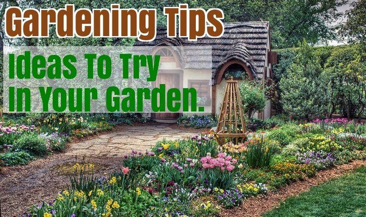 How To Start Your Own Organic Garden – Gardening Activities