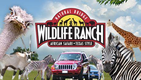 Welcome to Natural Bridge Wildlife Ranch Texas