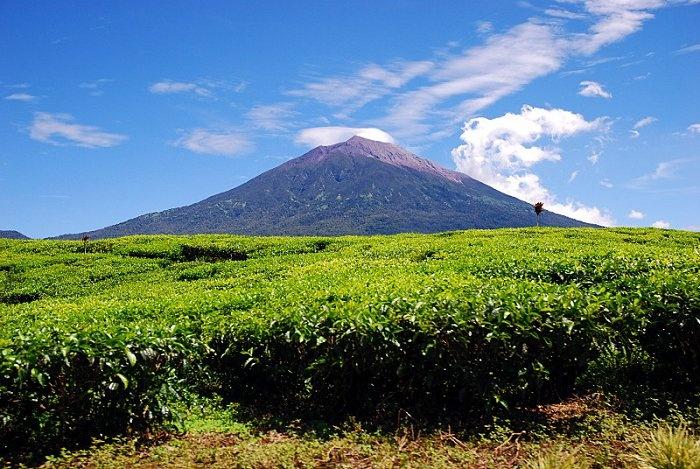 Gunung Kerinci, Jambi-Indonesia|http://www.nusatrip.com/id/tiket-pesawat/ke/jambi_DJB #mount #gunung #kerinci #jambi #destination #indonesia #asia #nusatrip #travel #travelingideas #onlinetravelagency
