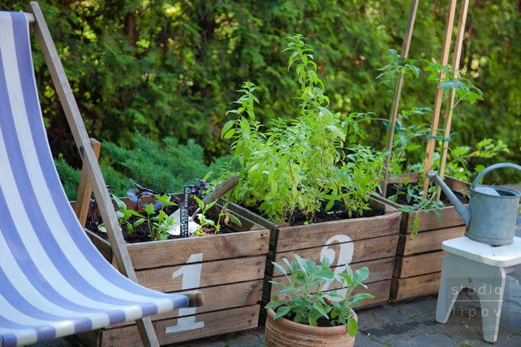 Jak zorganizować podręczny ziołowy ogródek w drewnianej skrzyni po owocach. | Lawendowy Dom
