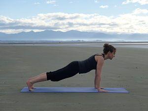 Santolasana - The Plank - Yoga Posture